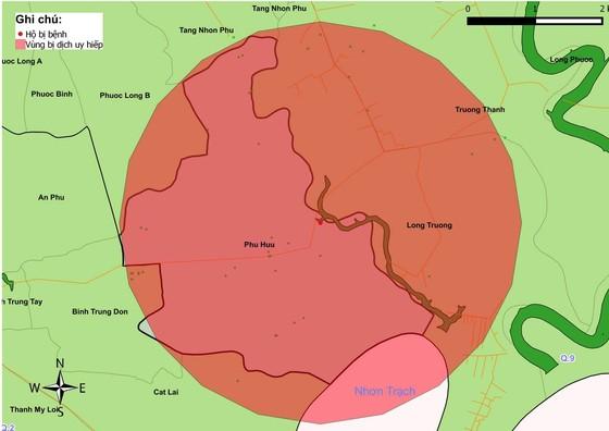TPHCM phát hiện dịch tả heo châu Phi tại quận 9 ảnh 4