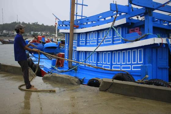 Áp thấp nhiệt đới, Quảng Ngãi vẫn còn 1.160 tàu hoạt động ngoài khơi ảnh 1