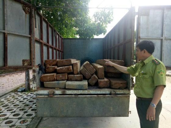 Chở gỗ lậu, tài xế để lại xe bỏ trốn ảnh 1