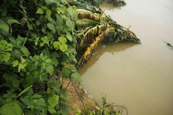 Sạt lở sông Vệ đe dọa hàng trăm hộ dân, nhiều nơi vùng núi bị cô lập ảnh 3