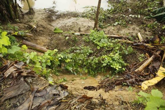 Sạt lở sông Vệ đe dọa hàng trăm hộ dân, nhiều nơi vùng núi bị cô lập ảnh 1