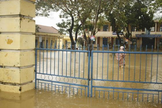 Quảng Ngãi: Mưa lớn làm thiệt hại nhiều diện tích rau màu, hơn 1.060 căn nhà bị ngập ảnh 2