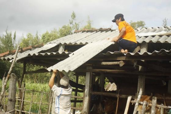 Lũ trên các sông Quảng Ngãi đạt đỉnh và đang xuống, nhà dân tốc mái đang khắc phục  ảnh 7