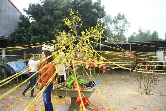 Mùng 1, hái lộc đầu năm với ngư dân Quảng Ngãi ảnh 2