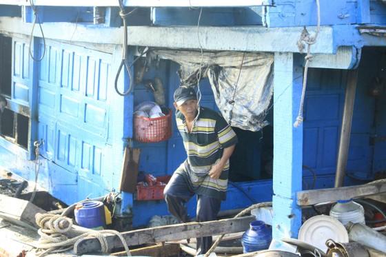 Quảng Ngãi: Cháy tàu cá, thiệt hại hơn 200 triệu đồng ảnh 4