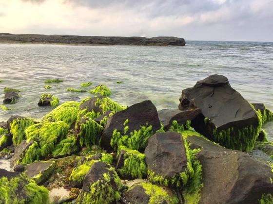 Mở rộng phạm vi công viên địa chất Lý Sơn - Sa Huỳnh đến 4.000km² ảnh 2