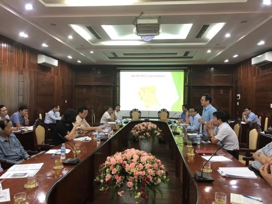 Khẩn trương hoàn thiện hồ sơ Công viên địa chất Lý Sơn-Sa Huỳnh ảnh 1