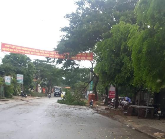Quảng Ngãi: Gió lốc tốc mái 3 nhà dân, cây xanh đường ngã đổ ảnh 4