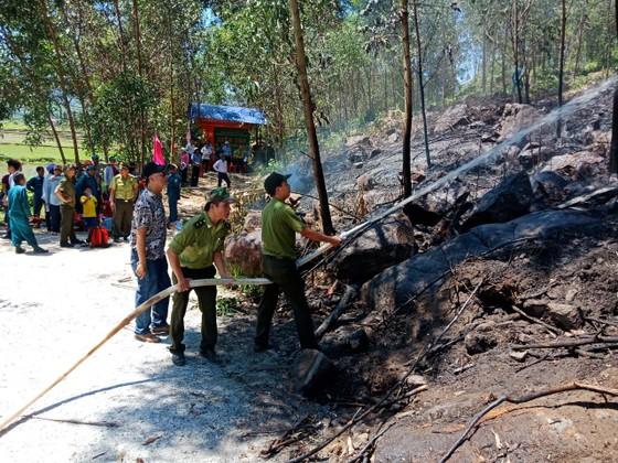 Quảng Ngãi: Diễn tập xử lý các tình huống cháy rừng ảnh 1