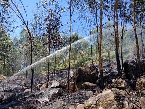Quảng Ngãi: Diễn tập xử lý các tình huống cháy rừng ảnh 2