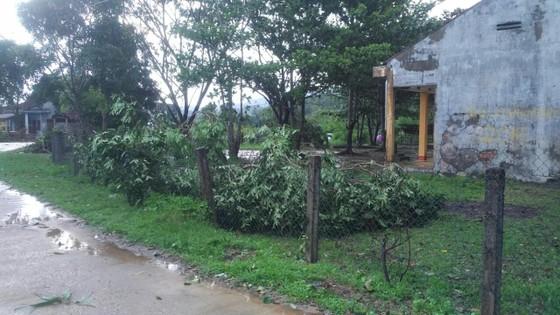 Lốc xoáy cuốn đổ sập hàng chục ngôi nhà ở Quảng Ngãi ảnh 5