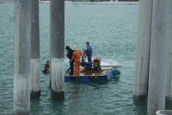 Thu được 10.000 tiêu bản sau khai quật tàu cổ Dung Quất (Quảng Ngãi) ảnh 2