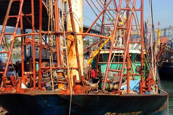 """Cận cảnh tàu vỏ thép NĐ 67 rỉ sét vì bị doanh nghiệp tráo thép """"dỏm"""" ảnh 1"""