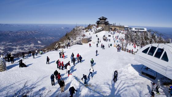 Trải nghiệm du lịch mùa Đông tại Hàn Quốc ảnh 1