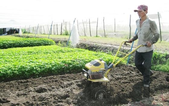Để nông dân, người lao động tự do có lương hưu ảnh 1