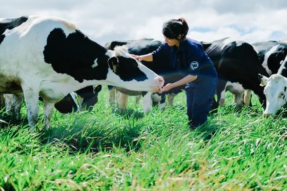 Việt Nam có hệ thống trang trại đầu tiên đạt chuẩn Global G.A.P. ảnh 1