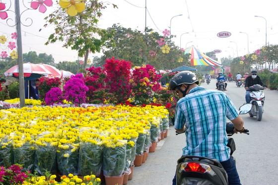 Chợ hoa xuân Bình Điền: Lan tỏa sắc xuân ảnh 2