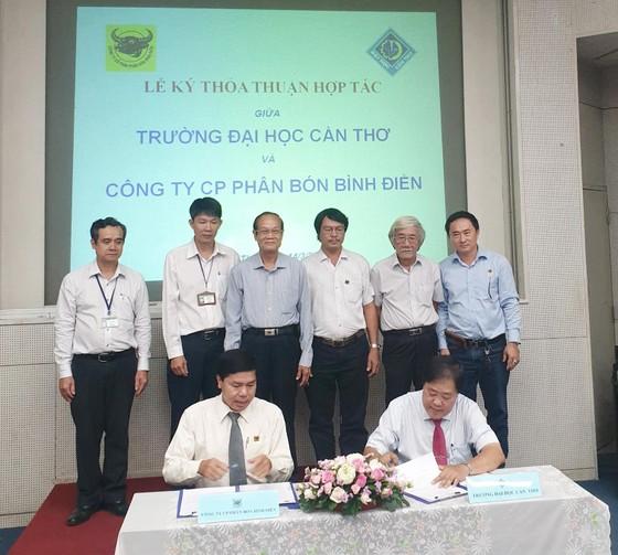 Công ty Bình Điền và ĐH Cần Thơ hợp tác hỗ trợ cho nông dân ĐBSCL ảnh 1