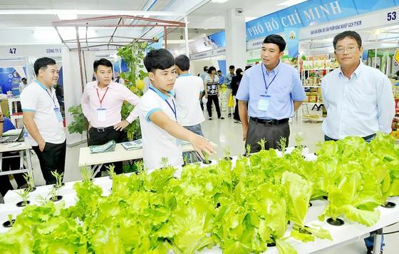 TPHCM xúc tiến các chương trình hàng Việt quy mô lớn  ảnh 1