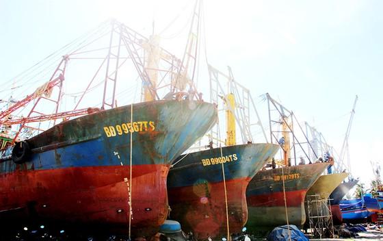 5 chủ tàu vỏ thép vẫn chưa nhận được tiền bồi thường ảnh 1