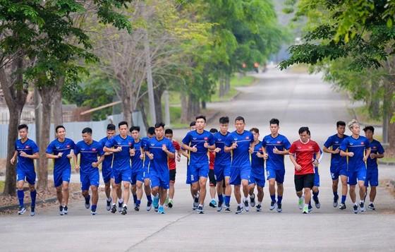 越南足球第二次登上東南亞頂峰 ảnh 1