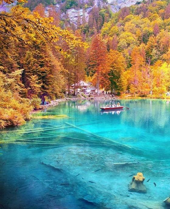 瑞士藍湖 ── 深林中的藍寶石  ảnh 3