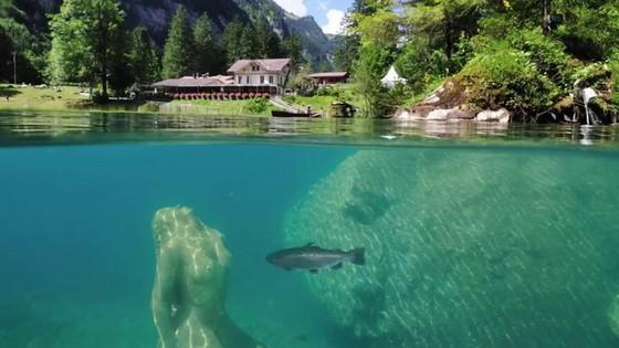 瑞士藍湖 ── 深林中的藍寶石  ảnh 1
