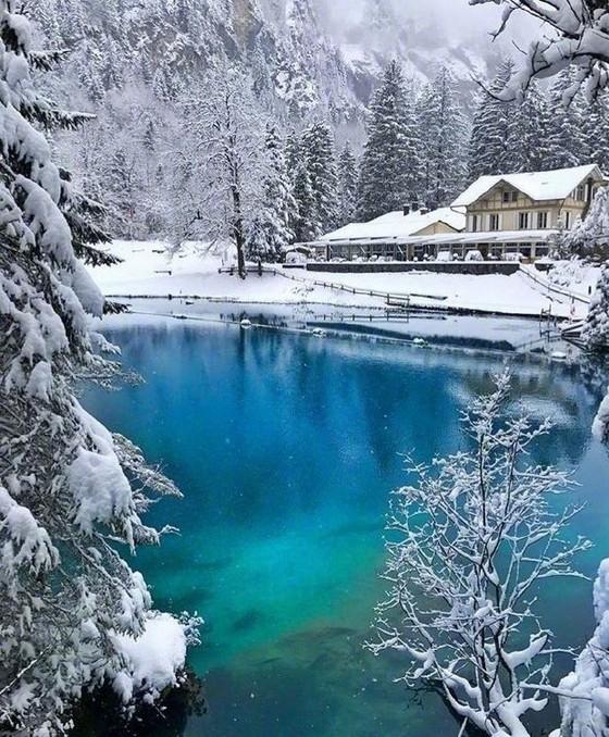 瑞士藍湖 ── 深林中的藍寶石  ảnh 2
