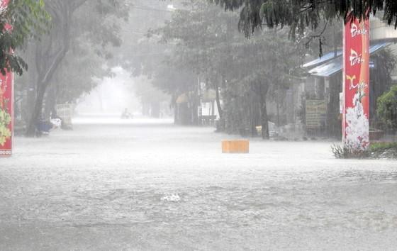 Mưa to trắng đêm, nhiều khu vực TP Đà Nẵng ngập nặng  ảnh 7