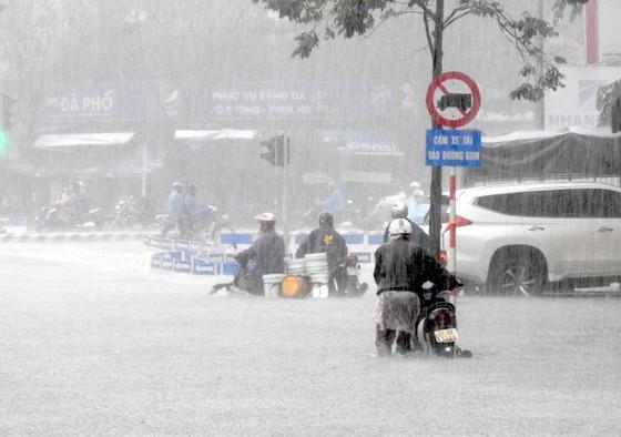 Mưa to trắng đêm, nhiều khu vực TP Đà Nẵng ngập nặng  ảnh 13