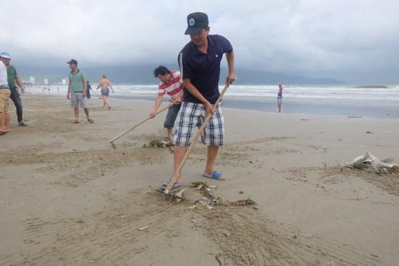 Đà Nẵng: Ra quân dọn sạch các bãi biển du lịch sau mưa lớn ảnh 1