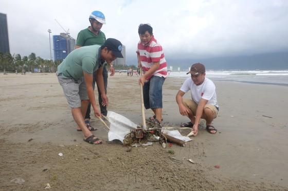 Đà Nẵng: Ra quân dọn sạch các bãi biển du lịch sau mưa lớn ảnh 9