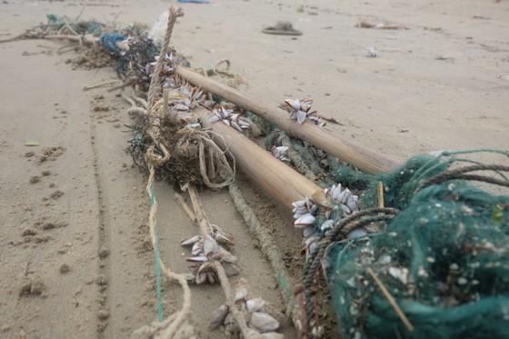 Đà Nẵng: Ra quân dọn sạch các bãi biển du lịch sau mưa lớn ảnh 2