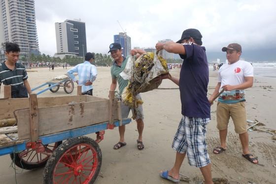 Đà Nẵng: Ra quân dọn sạch các bãi biển du lịch sau mưa lớn ảnh 5