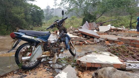 Lâm Đồng tan hoang sau bão 12 ảnh 7