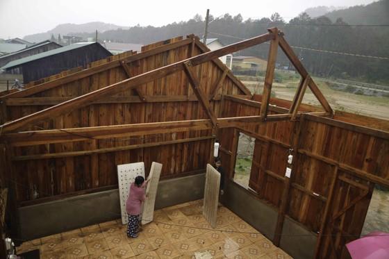 Lâm Đồng tan hoang sau bão 12 ảnh 1