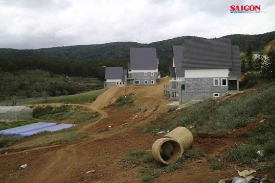 Xử lý khu nghỉ dưỡng cao cấp tại Đà Lạt tự ý san ủi 3 ha đất trái phép ảnh 3