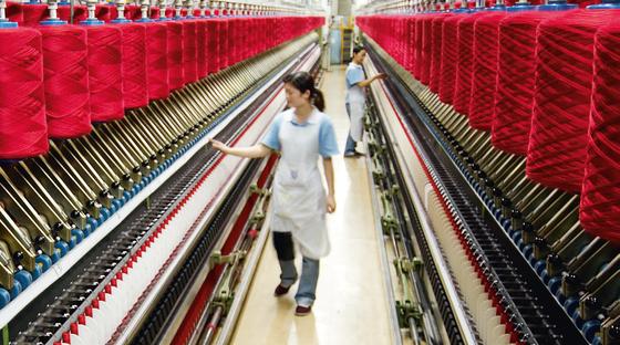 Xây dựng nhà máy kéo sợi len lông cừu tại Đà Lạt ảnh 1