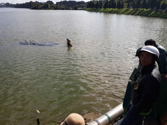 Đà Lạt: Xe tải lao xuống hồ Xuân Hương ảnh 1
