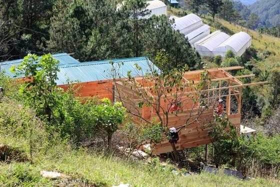 Tháo dỡ hàng loạt nhà không phép ở Đà Lạt ảnh 1