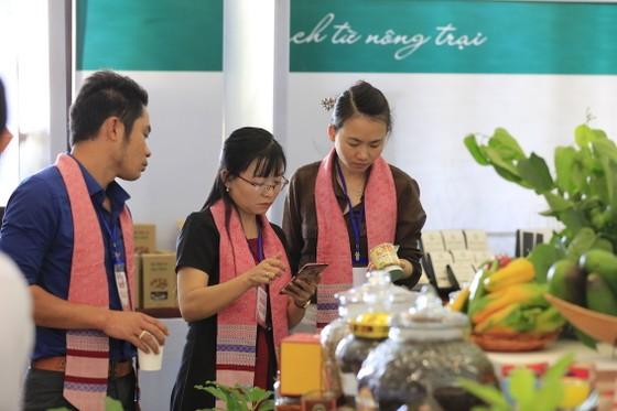 Thủ tướng Nguyễn Xuân Phúc: Đắk Nông cần giải quyết tốt các thủ tục hành chính trong đầu tư ảnh 4