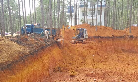 Dự án nghỉ dưỡng cao cấp phá rừng trái phép ở hồ Tuyền Lâm ảnh 2