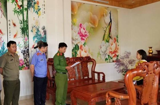 Khởi tố đối tượng chủ mưu phá 10ha rừng thông tại Lâm Đồng ảnh 9