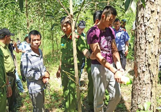 Khởi tố đối tượng chủ mưu phá 10ha rừng thông tại Lâm Đồng ảnh 4