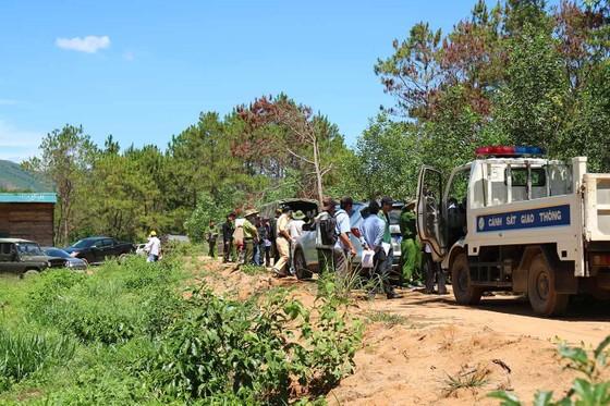 Khởi tố đối tượng chủ mưu phá 10ha rừng thông tại Lâm Đồng ảnh 5