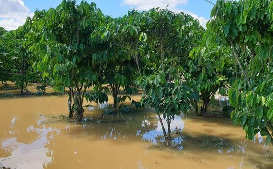 Nước lũ gây ngập nặng ở TP Bảo Lộc ảnh 4