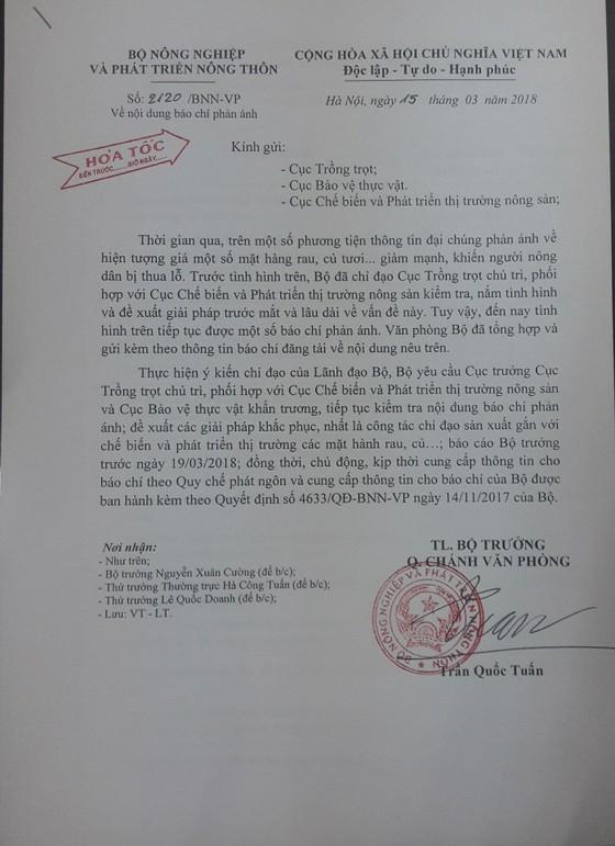 Rau củ thu hoạch đổ bỏ đầy đồng, Bộ NN-PTNT yêu cầu kiểm tra ảnh 4