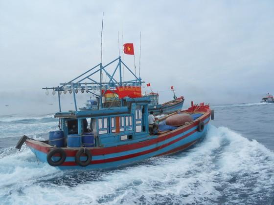 Ban chỉ đạo Trung ương đề nghị Bộ Ngoại giao làm việc với các nước hỗ trợ ngư dân tránh bão ảnh 1