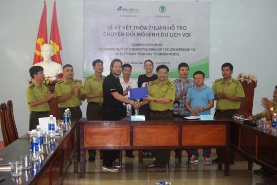 """Tài trợ 65.000USD để """"không cưỡi voi"""" tại Đắk Lắk ảnh 2"""