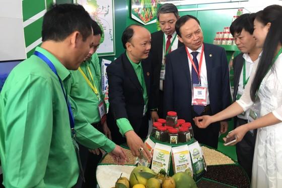 """Thủ tướng Nguyễn Xuân Phúc chủ trì hội nghị tổng kết 10 năm """"tam nông"""" ảnh 2"""